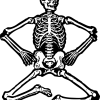 İskelet, Skeleton