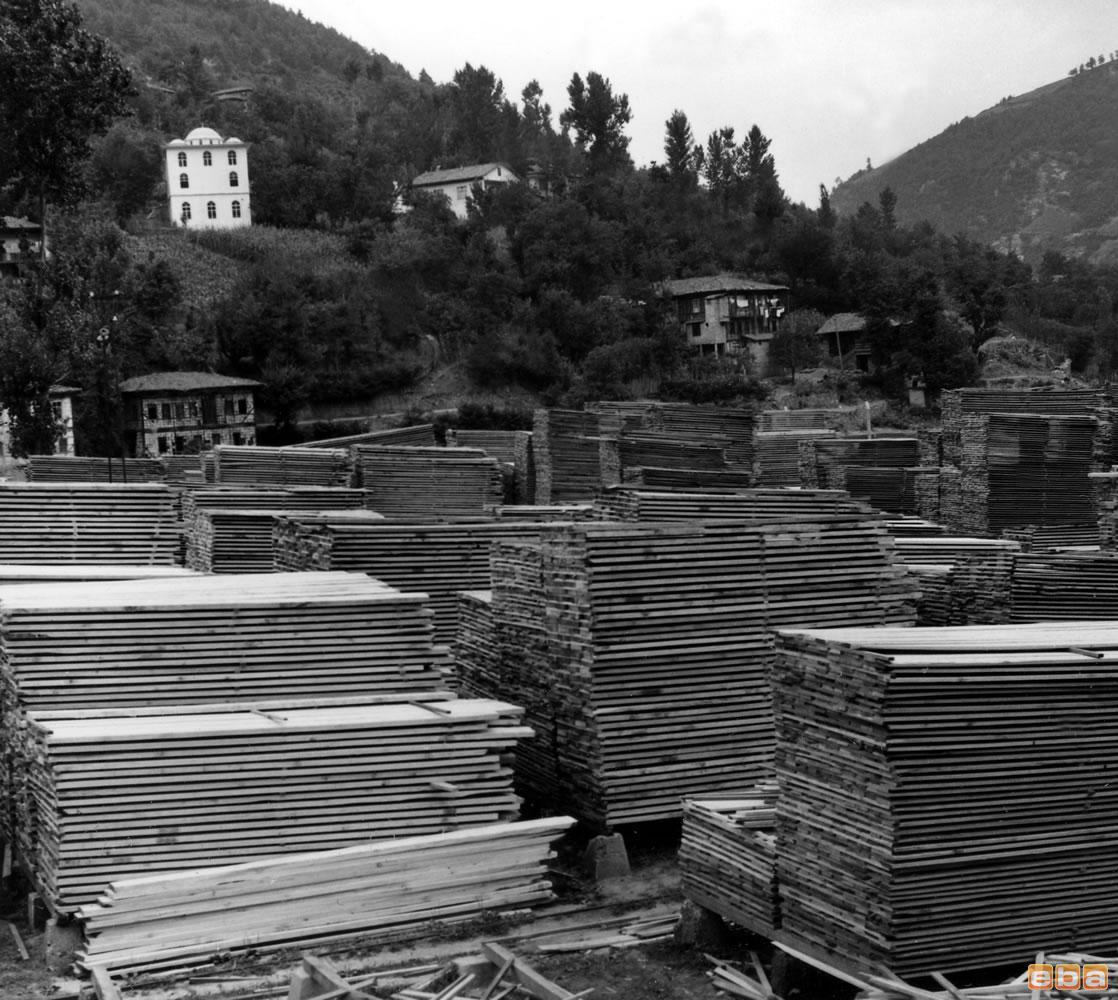 Artvin, kereste fabrikası, tahtaların tasnifi